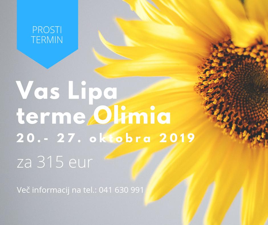 Vas Lipa 2019 2 1