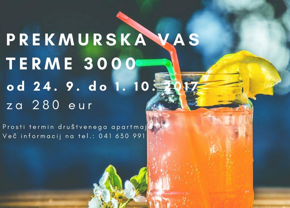 Prekmurska vasTerme 3000 9